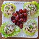 fitness-chicken-lettuce-jpeg